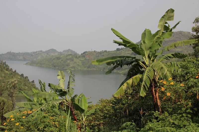 RuandaIMG_7050