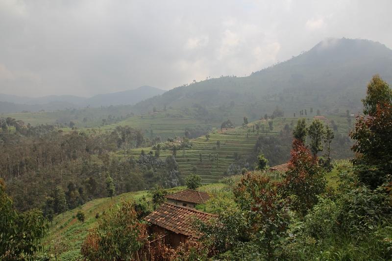 RuandaIMG_7067