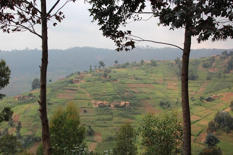 RuandaIMG_7069