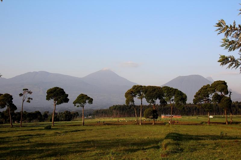 RuandaIMG_7139