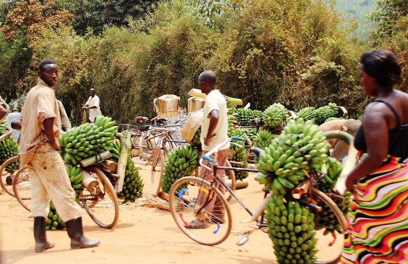 UgandaIMG_7884