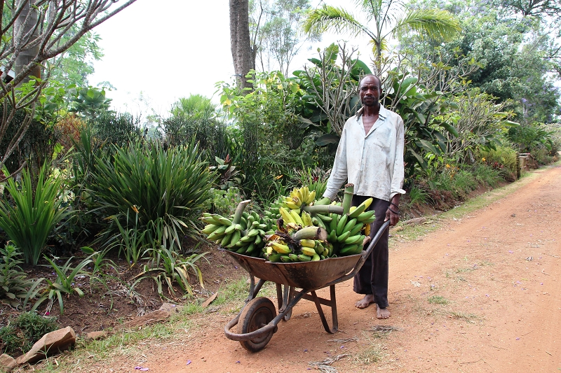 UgandaIMG_8006