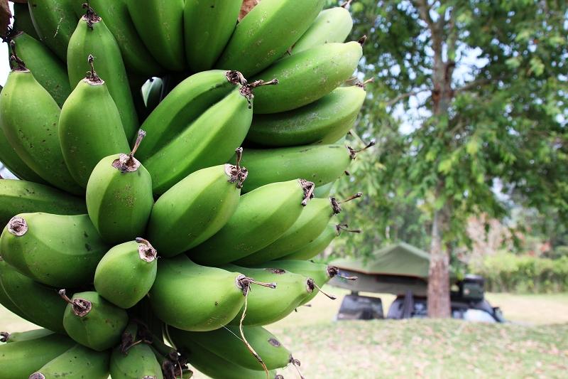 UgandaIMG_8078
