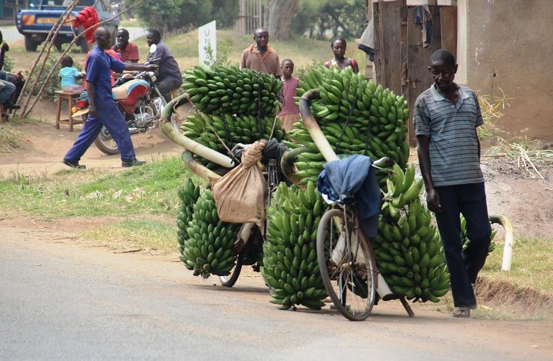 UgandaIMG_8185