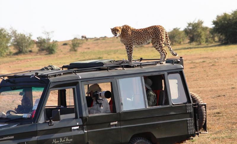 Masai_MaraIMG_9723