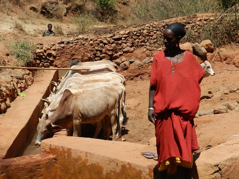 ÄthiopienDSCN5988