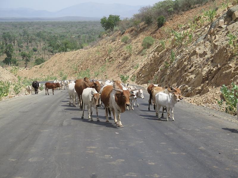 ÄthiopienIMG_0017